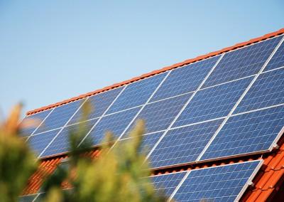 Solardach und grŸner Busch